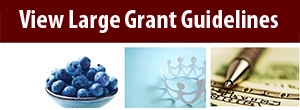 Large Grant Guidelines